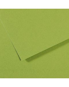 Karton Canson Mi-Teintes Pastel 50x65 160gr - zelena - 475